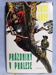 náhled knihy - Prázdniny v pralese
