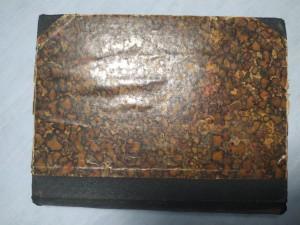 náhled knihy - V osidlech ženy : obraz mravů pařížských