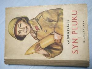 náhled knihy - Syn pluku
