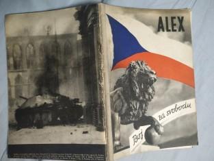 náhled knihy - Zpráva o vzniku, organisaci a bojových akcích při osvobozenském boji skupiny generála Zdeňka Nováka a generála Fr. Slunečko (krycí jméno Alex)
