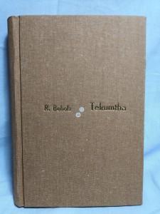 náhled knihy - Tekumtha : poslední velký Shawnee : kniha dobrodružství