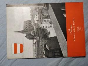 náhled knihy - Brno: město nového života