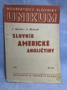 náhled knihy - Slovník americké angličtiny