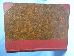 náhled knihy - Pod praporem blankytné barvy