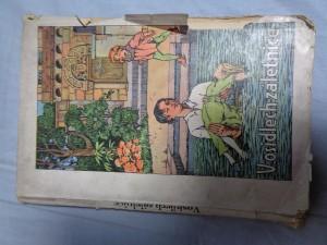 náhled knihy - V osidlech záletnice