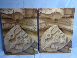náhled knihy - Dějiny českého výtvarného umění I