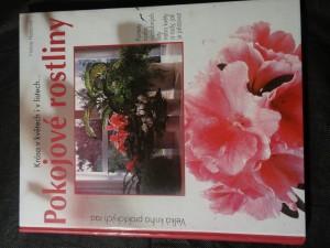 náhled knihy - Pokojové rostliny : krása v květech i v listech