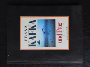 náhled knihy - Franz Kafka und Prag