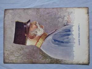 náhled knihy - Kaiser Franz Joseph I.