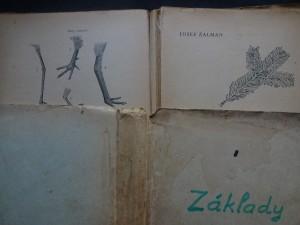 náhled knihy - Základy myslivosti s mysliveckou abecedou. Díl I