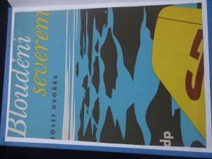 náhled knihy - Bloudění severem : kniha pro mládež