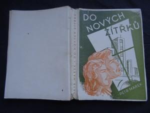 náhled knihy - Do nových zítřků : román průbojného člověka