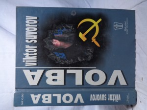 náhled knihy - Volba
