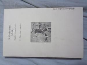 náhled knihy - Náboženství Afriky: tradice v proměnách