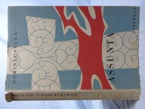 náhled knihy - Assunta: román