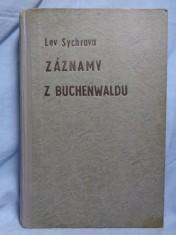 náhled knihy - Záznamy z Buchenwaldu