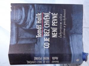 náhled knihy - Co je bez chvění, není pevné: labyrintem světa s vírou a pochybností