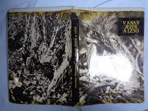 náhled knihy - V kraji jezer a lesů