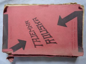 náhled knihy - Tajemná rouška: román