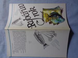 náhled knihy - Rybářův rok