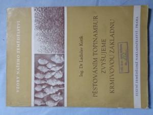 náhled knihy - Pěstováním topinambur zvyšujeme krmivovou základnu