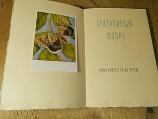 náhled knihy - Stužkonoska modrá