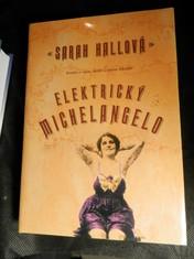náhled knihy - Elektrický Michelangelo : román o lásce, ztrátě a umění tetování