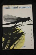 náhled knihy - Malá letní romance