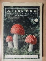 náhled knihy - Atlas hub jedlých a nejedlých 1. díl