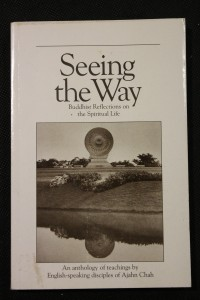 náhled knihy - Seeing the Way, Buddhist Reflections on the Spiritual Life