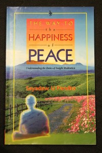 náhled knihy - The Way to the Happiness of Peace, Understanding the Basics of Insight Meditation