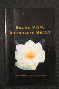 náhled knihy - Broad  View, Boundless Heart