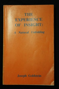 náhled knihy - The Experience of Insight: A Natural Unfolding