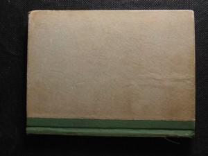 náhled knihy - Jindra na stopě : dobrodružný román