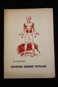 náhled knihy - Slovenské národné povstanie