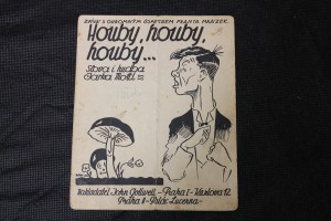 náhled knihy - Houby, houby, houby-