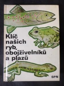 náhled knihy - Klíč našich ryb, obojživelníků a plazů : pomocná kniha k učebnicím zoologie všeobec. vzdělávacích, stř., odb. a vys. škol