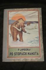 náhled knihy - Po stopách mamuta