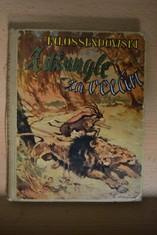 náhled knihy - Z džungle za oceán : Dobrodružství dvou černoušků