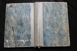 náhled knihy - Tělo dítěte : Rodičům, vychovatelům, lékařům a umělcům