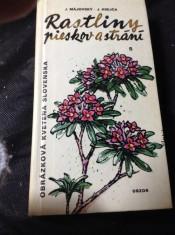 náhled knihy - Obrázková kvetena Slovenska. [Časť 1], Rastliny pieskov a strání