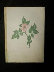 náhled knihy - Poznáš je, když kvetou ?
