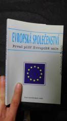 náhled knihy - Evropská společenství : první pilíř Evropské unie