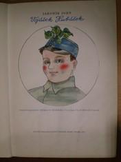 náhled knihy - Vojáček Hubáček
